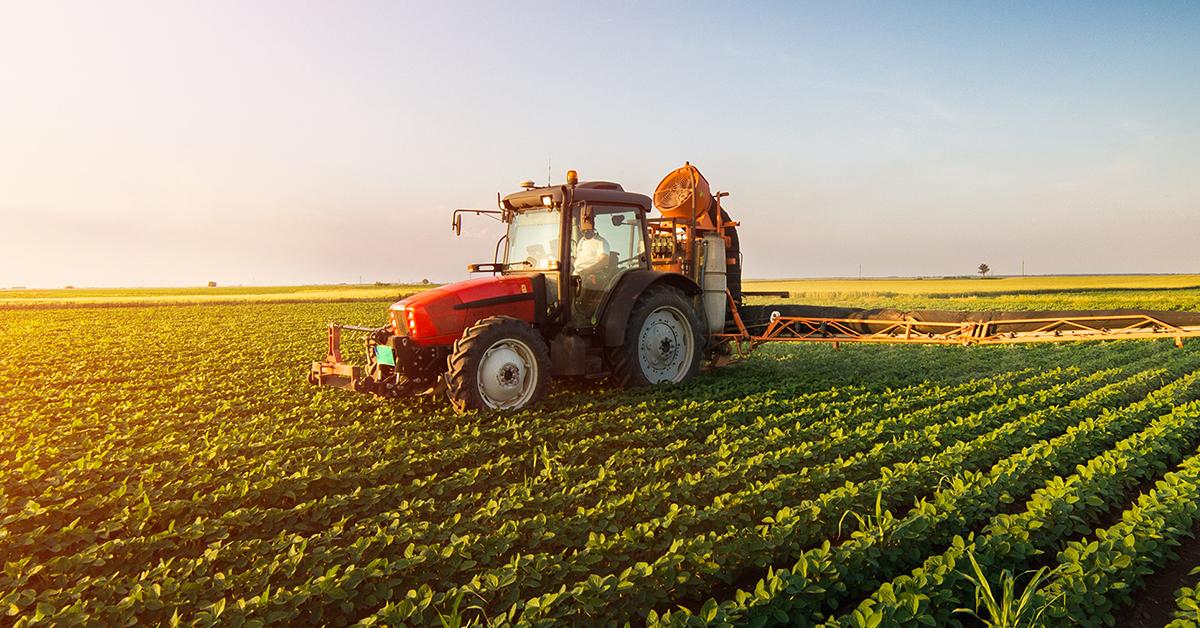 Agricoltura: oltre sette milioni di euro per il nuovo bando destinato ai gruppi operativi